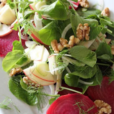 Beet, Apple, and Fennel Salad